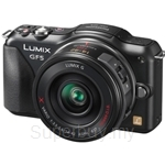 Panasonic Lumix GF5X (14-42 Power Zoom lens)