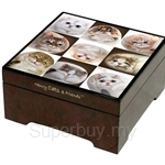 HCF Cats In The Box Musical Jewelry Box - CJB2-41A