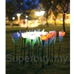 Lumipot ST1 Solar Tulips Flower