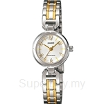 Casio Standard Analog: Lides, Petite Feminine Design Watch - LTP-1373SG-7A July 2013 Model