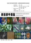 新圖解牛樟菇