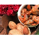 Signature Snack Honey Rosemary Almond Walnut (95g)