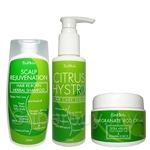 EcoHerbs Citrus Hystrix Package Value Complete Set Hair Care (Beginning & Serious Cases of Hair, Headache & Migraine Problems)