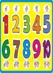 益智學習手抓板:數字點點名
