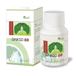 Oasis Ginkgo 80 (100 Tablets x 300mg)
