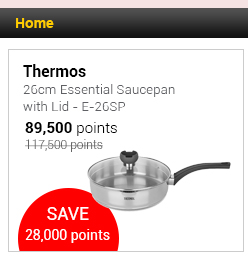 Thermos 26cm Essential Saucepan with Lid - E-26SP