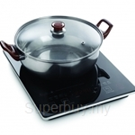 Pensonic Induction Cooker - PIC-21